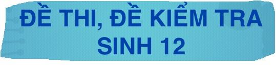 ĐỀ KTTX-LẦN 1